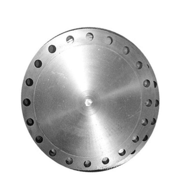 stainless steel bl flange